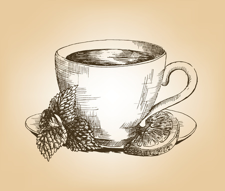 a sprig: Cup of tea with mint and lemon. Cup with tea, sprig of mint and lemon slice on saucer. Hand drawn graphic illustration. Vector Illustration