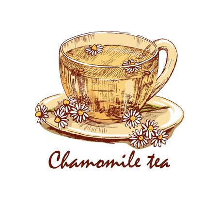 camomile tea: Colored hand drawn cup of chamomile tea. Cup of herbal tea and chamomile flowers on saucer. Hand drawn graphic illustration isolated on white background. Vector