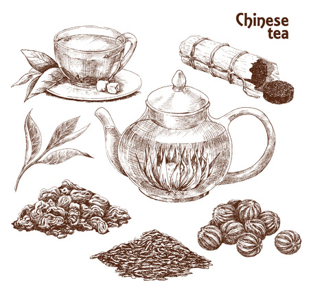 Chinese tea set. Hand drawn collection of varied traditional Chinese tea in vintage style. Vector illustration Illustration