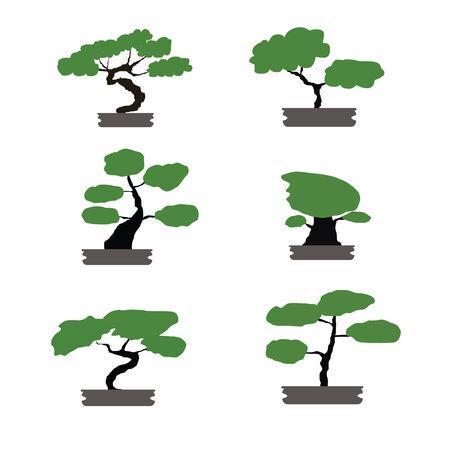 Bonsai bomen geïsoleerde ingesteld Japanse stijl Stockfoto - 34323089
