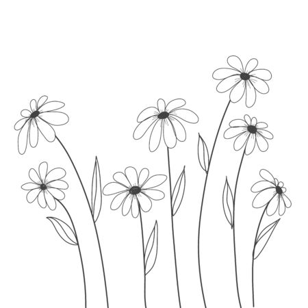 daisy flowers hand drawn vector for background , decorate, cover