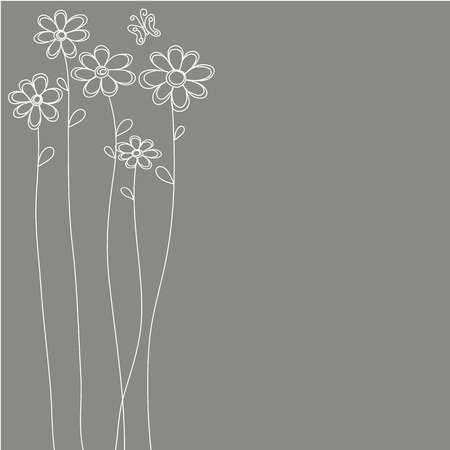 white flowers  with grey background