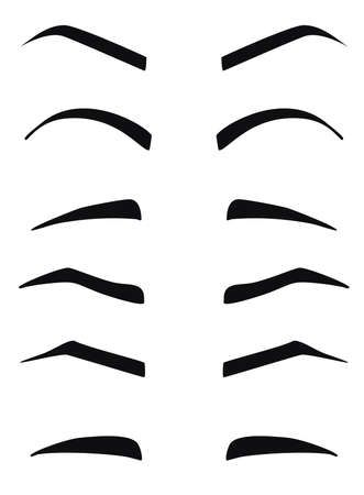 Types and forms of eyebrows vector. Eeybrows vector. Illustration