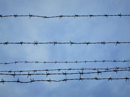 Barbed wire against the sky. Close-up photo.