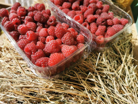 Fresh, ripe, red raspberries in plastic containers on a bale of hay. Top view. Close up