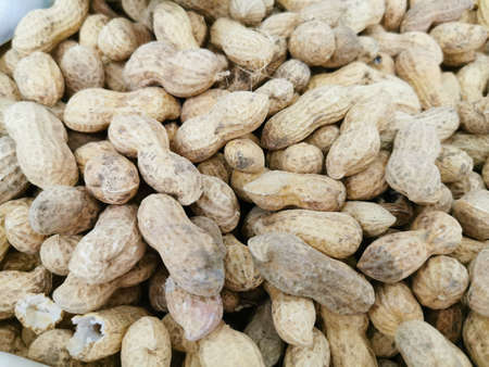 The fruits of peanuts in the shell, husk. Close-up photos