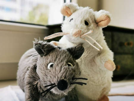 Two cute funny mouse, a symbol of the year 2020 on the astrological calendar. Photo of childrens toys close-up 스톡 콘텐츠