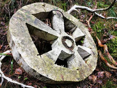 Beautiful closeup of wooden wheel for concept design. Landscape design on the Curonian spit in the forest. Travel transportation concept. Rural landscape. Standard-Bild - 136448016