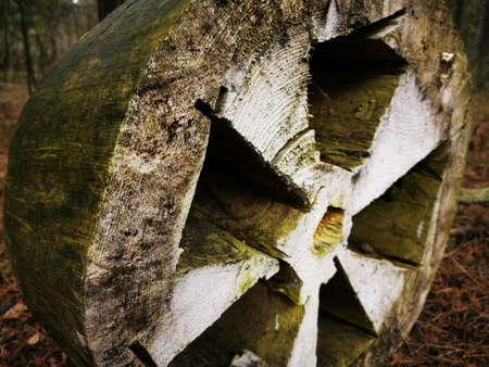 Beautiful closeup of wooden wheel for concept design. Landscape design on the Curonian spit in the forest. Travel transportation concept. Rural landscape. Standard-Bild - 136448260
