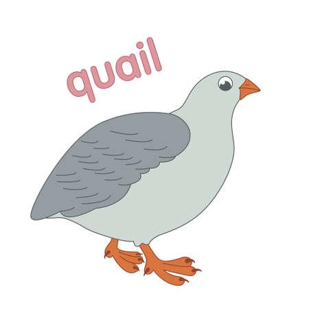 Quail home illustration for children. Иллюстрация