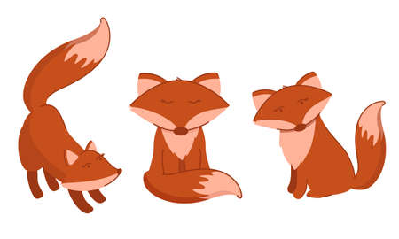 Set with red foxes in different poses. Animal vector illustration set.  イラスト・ベクター素材