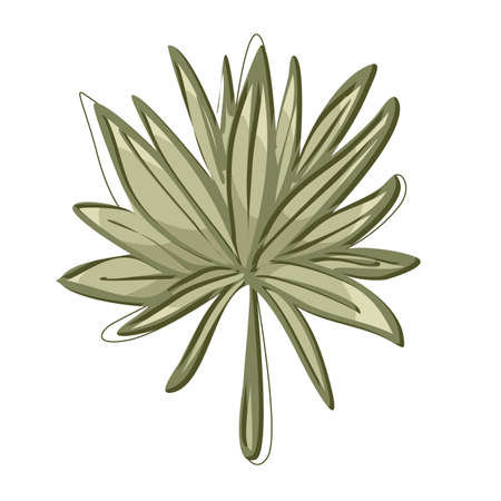 Green sprout of a plant with lots of leaves vector illustration
