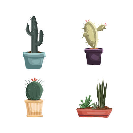Cacti in pots set illustration set green. Vector illustration Vettoriali
