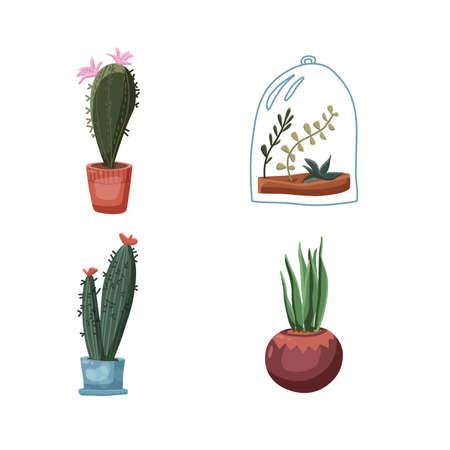 Green succulents cacti in pots set illustrations. Vector illustration Vettoriali