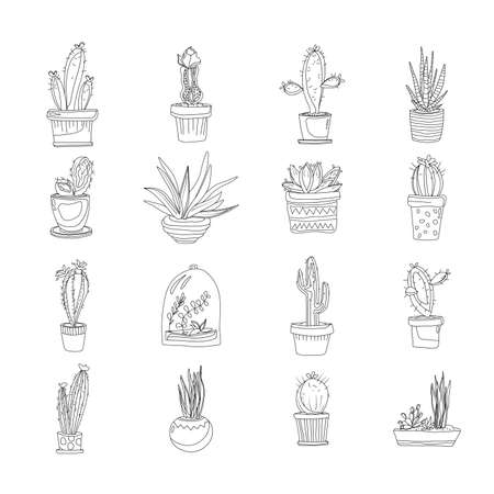 Cacti in pots set of icons in one line