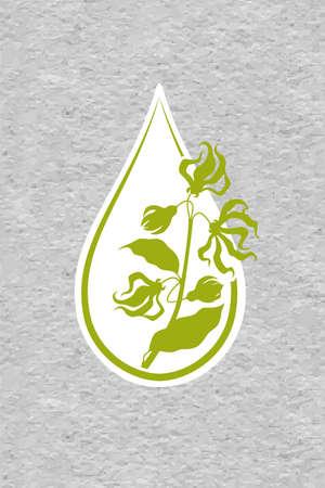 Une goutte d'huile essentielle de fleur d'ylang ylang. Branches d'arbre cananga. Aromathérapie, parfumerie, cosmétique, spa . papier radeau texturé