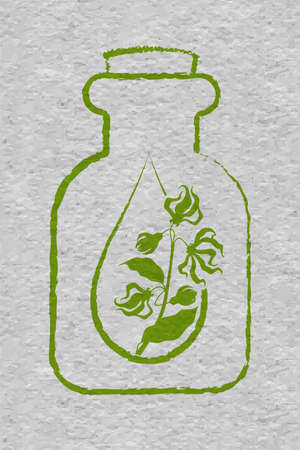 A bottle with essential oil of ylang-ylang. A drop of ylang ylang flower essential oil. Branches of cananga tree. Craft paper textured Illustration