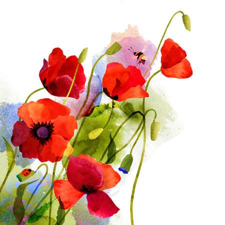 Aquarell roten Mohnblumen