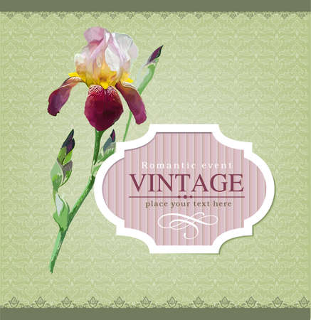 iris flower: Vintage vector labels  Illustration