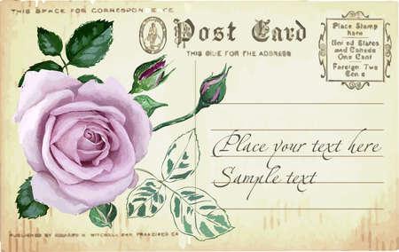 art nouveau vintage: Vintage border with rose