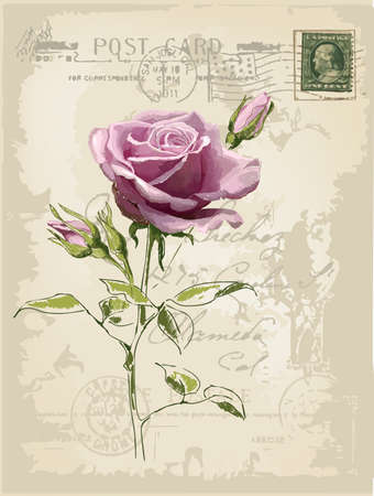 rose stem: vintage postcard with a beautiful rose hand-drawing