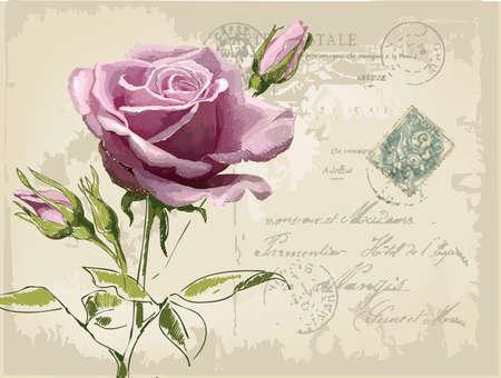 postal de la vendimia con una hermosa rosa mano-dibujo Ilustración de vector