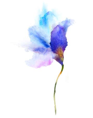 mariposa azul: Acuarela flor