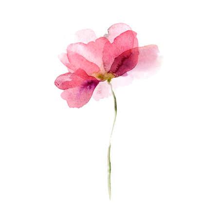 Hermosas flores de acuarela Foto de archivo - 23103858