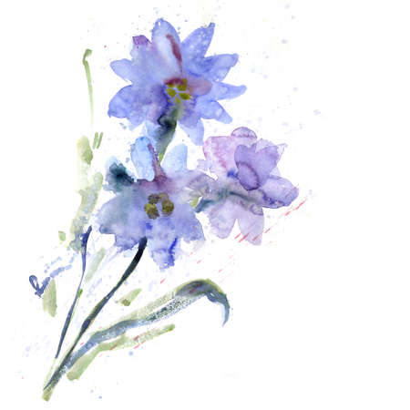Beautiful watercolor flowers photo