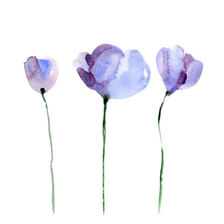Beautiful watercolor flowers Фото со стока