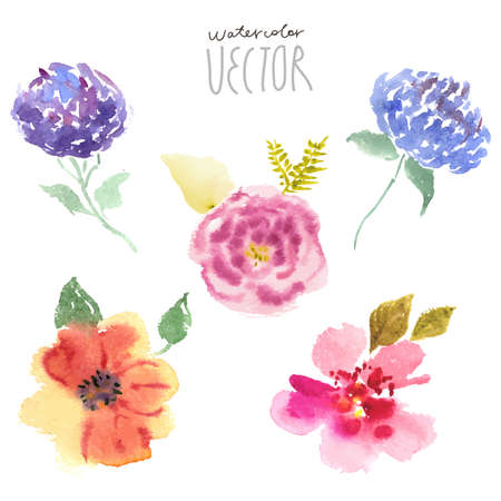 the bright colors: Floral background, watercolor painting vector Illustration