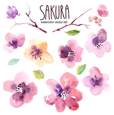 fleurs Aquarelle dans le vecteur Illustration