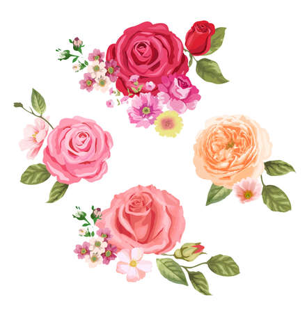 baroque border: Roses set Illustration