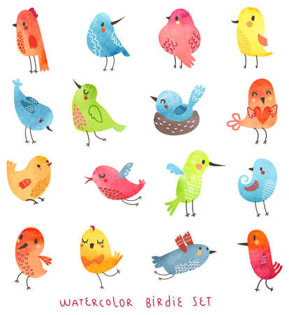 Watercolor birds in vector