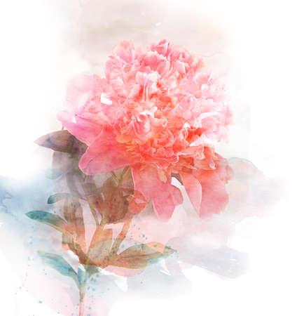 graficas de pastel: Tarjeta de la acuarela con la flor hermosa
