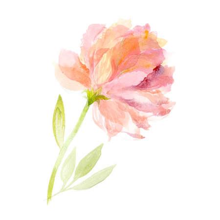 Wenskaart. Waterverf bloemen achtergrond. Roze pioen Stockfoto