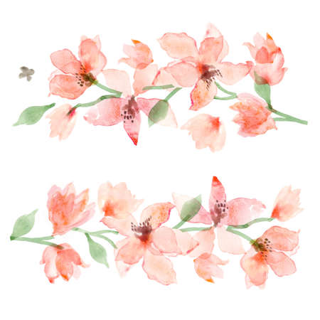 Aquarell Sakura. Blumenhintergrund, Blumenmalerei Standard-Bild - 64825569