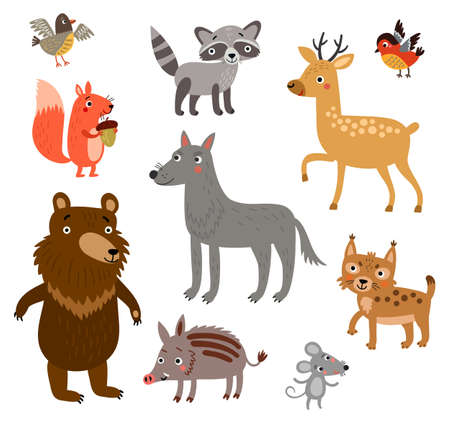 Forest animals 일러스트