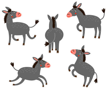 Donkey. Set of vector characters.