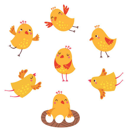 Cute birds vector set