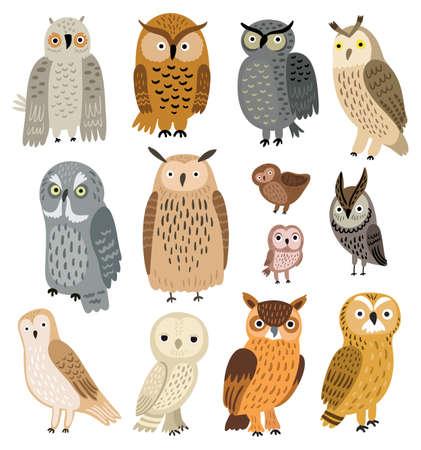 Owls. Vector set of different owls Illustration