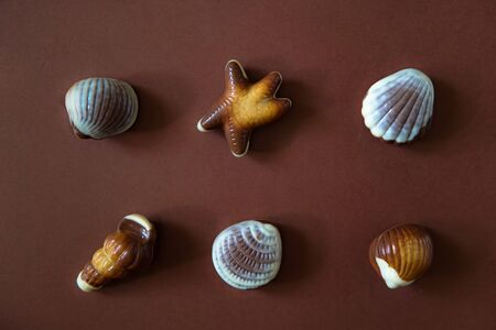 Assorted Chocolate pralines with sea concept on brown background.