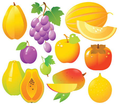 10 sweet ripe fruits and berries in one file: Melon, grape, apple, persimmon, mango, passion fruit, starfruit, gooseberry, plum and papaya. Fresh and tasty. Vector