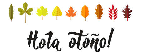 Hola otono Lettering. Spanish translation: Hello autumn. calligraphy vector illustration. element for flyers, banner and posters. Modern calligraphy. Foto de archivo - 114941709