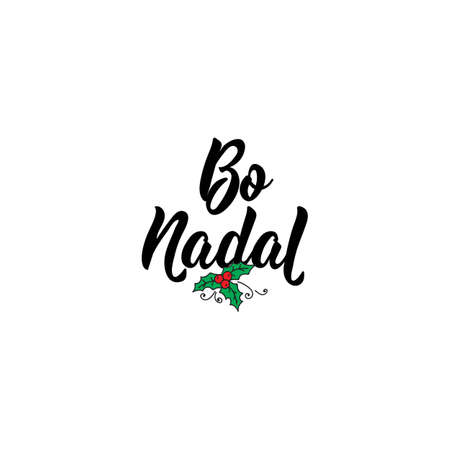 Merry Christmas in Gallic. Holiday lettering. Hand drawn vector illustration. Standard-Bild - 137235370