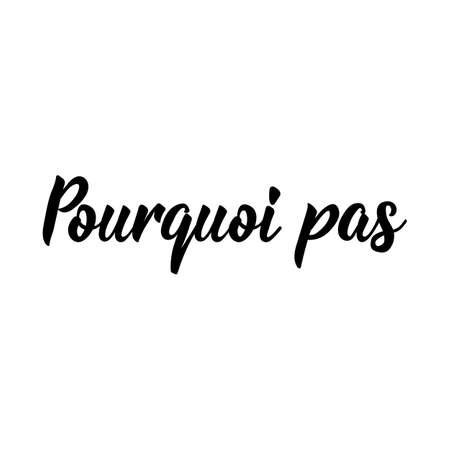 Pourquoi pas. French lettering. Translation from French - Why not. Element for flyers, banner and posters. Modern calligraphy. Ink illustration 矢量图像