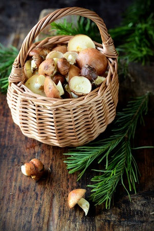 Fresh brown mushrooms in a small basket in rustic style photo