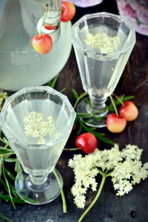 Elderflower drink with elderberry flowers and cherries photo