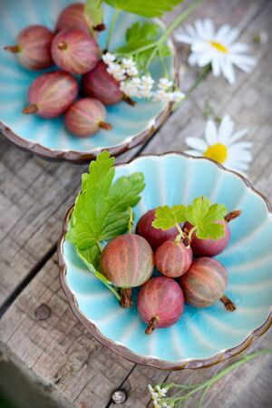 ribes: Fresh gooseberries in fruit bowl on wooden background