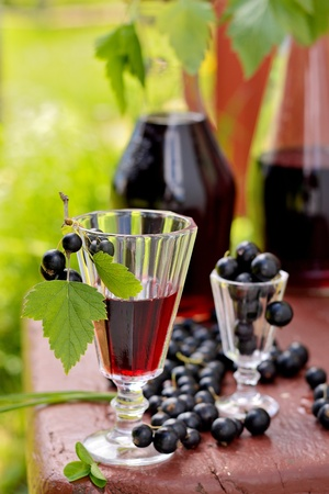 Drink from the glass of black currant and berries with leaves Standard-Bild